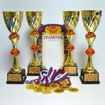 Наградная атрибутика (Кубки, медали, грамоты)